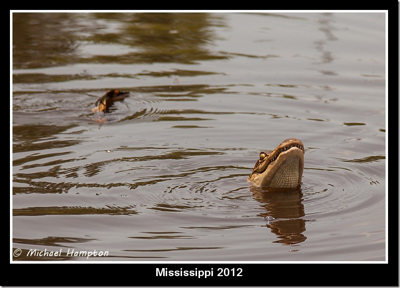 Mississippi 2012