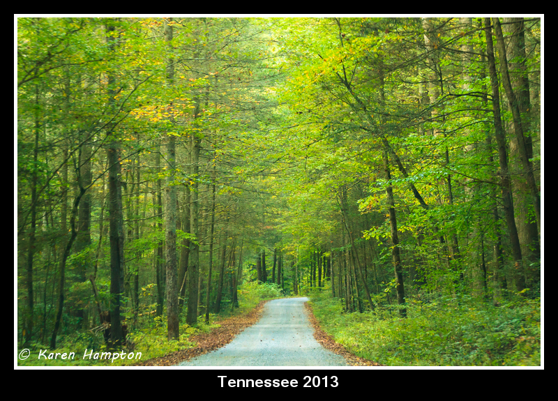 Tennessee 2013