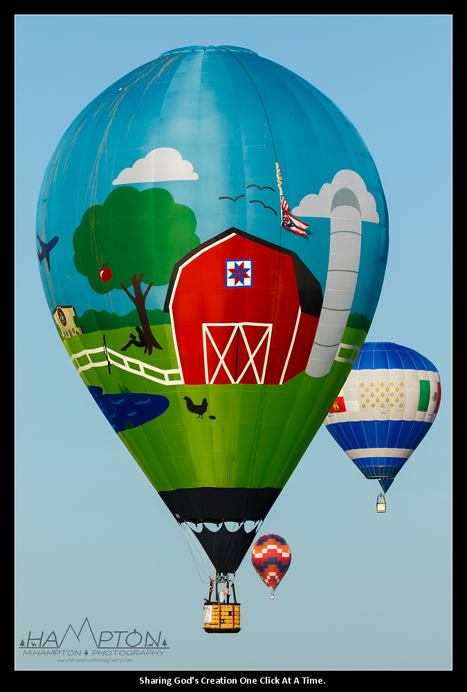 Farm Balloon